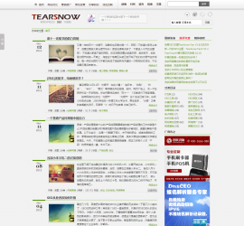 WordPress SEO主题TearSnow Fan v2.8 利于SEO模板
